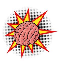 brain explosion intelligence human vector image