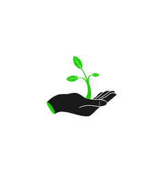 hand holding plant - logo design vector image