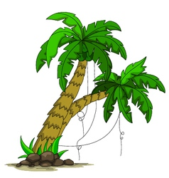 palm tree design vector image