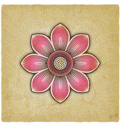 pink lotus flower on vintage background vector image