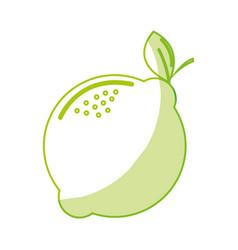 silhouette delicious lemon healthy fruit vector image