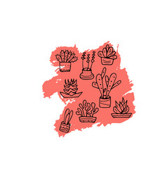 succulents in doodle style vector image