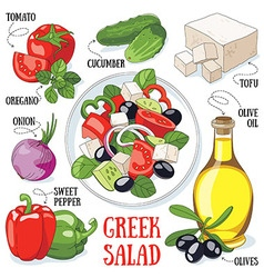 Greek salad vector image vector image