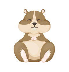 hamster cartoon cute pet character rodent vector image