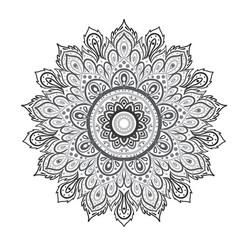 mandala beautiful vintage round pattern hand vector image