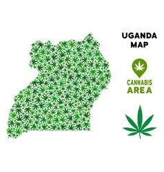 Marijuana mosaic uganda map vector