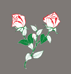 Rose flower branch with buds vector