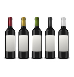 set 5 realistic black bottles wine vector image