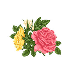 Set pink yellow roses bouquets flowers and vector