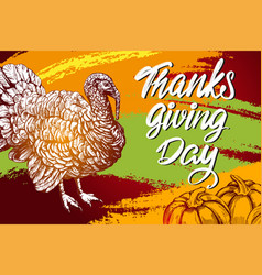 thanksgiving day holiday poster turkey domestic vector image