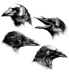 Crow head drawing line work set 02 vector image