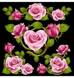 pink Rose design elements vector image
