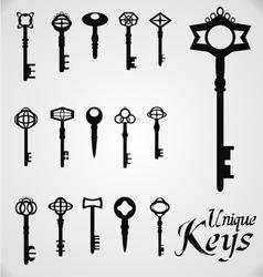 Unique Keys vector image vector image