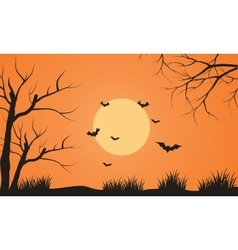 At afternoon bat flying scenery silhouette vector