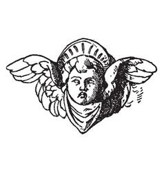 Cherub head is in italian renascence candelabrum vector