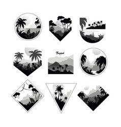 collection of monochrome geometric tropical logo vector image