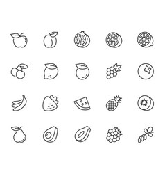 fruits icon set in thin line style vector image