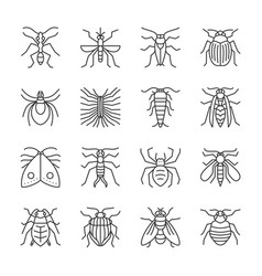 Insect thin line icon set editable stroke vector