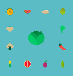 set of fruit icons flat style symbols with potato vector image