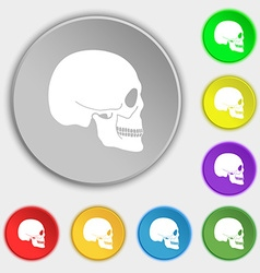 Skull icon sign Symbol on eight flat buttons vector