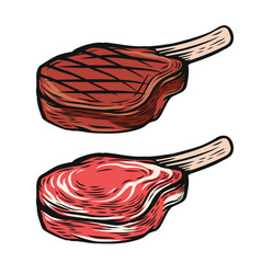 fresh and cooked meat steak vector image