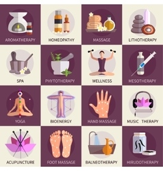 Alternative Medicine Icons Set vector