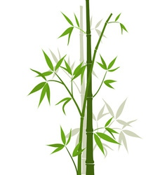 Bamboo sticks vector image