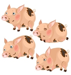 Cartoon pink pigs in four poses animal vector image