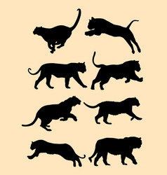 cute black tiger silhouette vector image