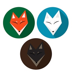 Red Fox Arctic Fox Brown Fox vector