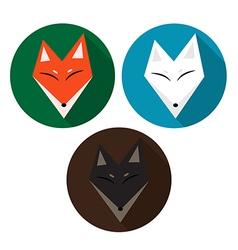 Red fox arctic fox brown fox vector