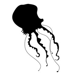 silhouette of jellyfish vector image