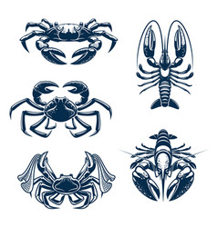 seafood icon set with crab and lobster vector image