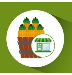 Store fresh pineapple farm product vector