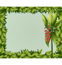 A green border vector image