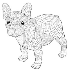 Adult coloring bookpage a cute dog image for vector