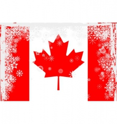 Canadian flag snowflakes grunge vector image