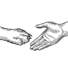 Dog paw handshake engraving vector