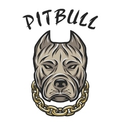 Head of a pit bull with a chain vector