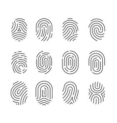 icon set black fingerprint identification symbol vector image