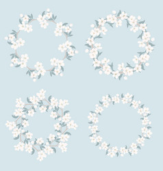 set collection floral frames chamomile and vector image