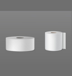 toilet paper kitchen towel 3d realistic vector image