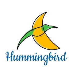Bright hummingbird soaring in the sky vector image