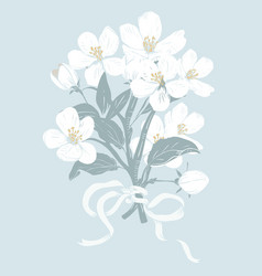 blooming tree hand drawn botanical white blossom vector image