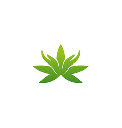 creative logo cannabis hands design symbol vector image