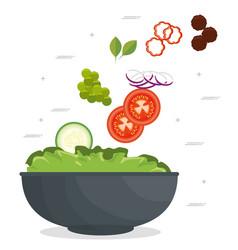 fresh healthy salad vector image