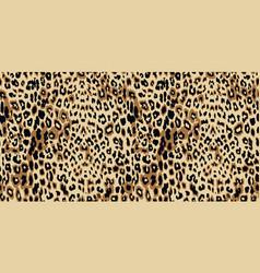 leopard seamless pattern design vector image