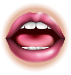 Mouth body part vector
