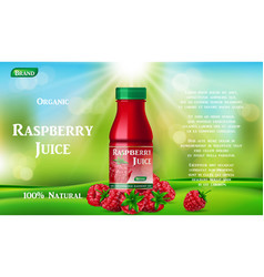 raspberry juice bottle on green grass fruit juice vector image