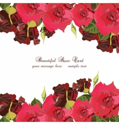 Watercolor Red Roses card vector image